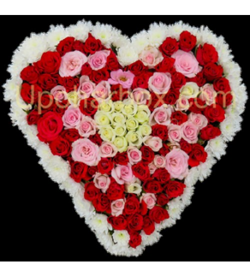 Mixed colour Heart Shaped Roses