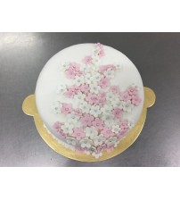 Vanilla cake with touch of pink
